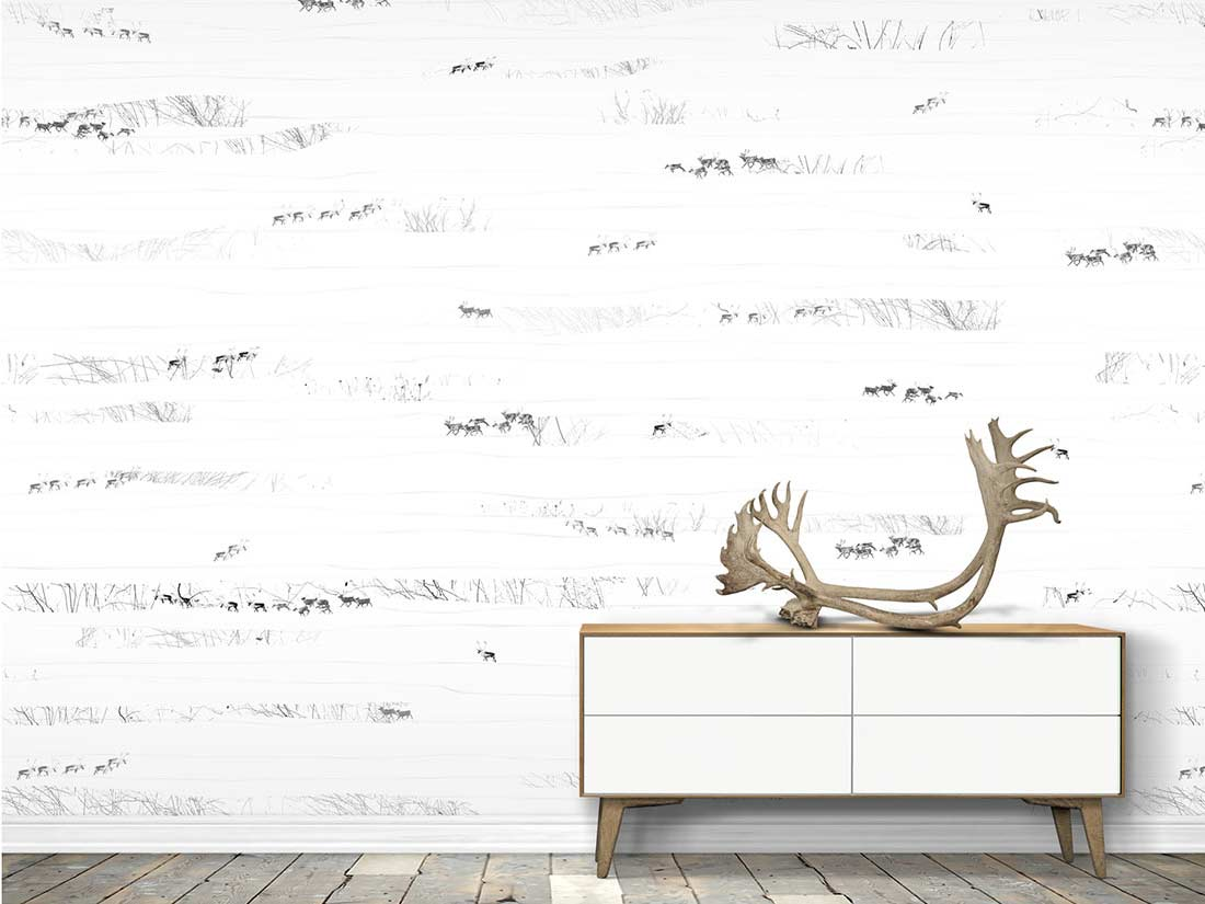 wallpaper designed for australians with a scandinavian twist the