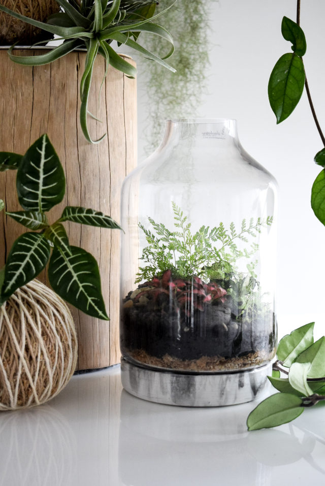 Resin Art-based Terrarium