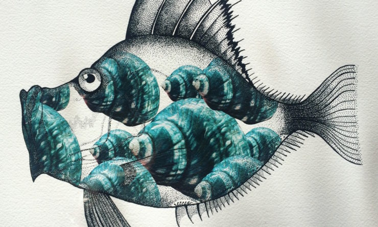 Meet the two Aussie illustrators exploring the animal kingdom