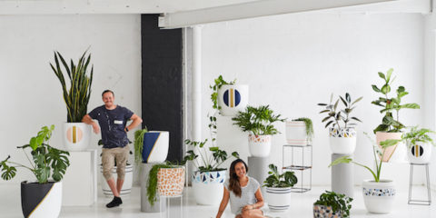 Get 20% off Design Twins' new Palm Springs pots