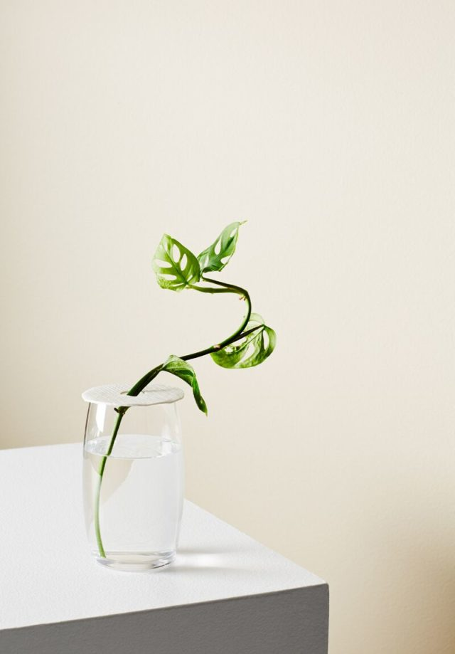 3d Printed Vases Concrete Plant Stands Ivy Muse S New Range The Interiors Addict