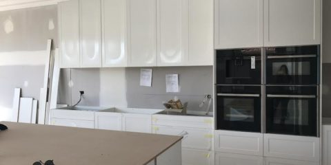 Julia and Sasha's new reno, update 5: kitchen and laundry week