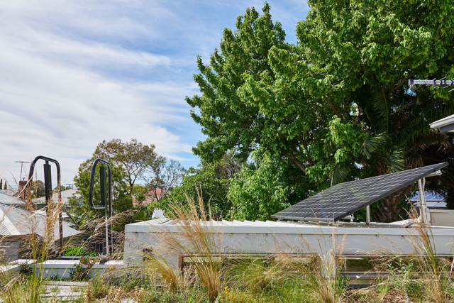 The home's green roof provides insulation