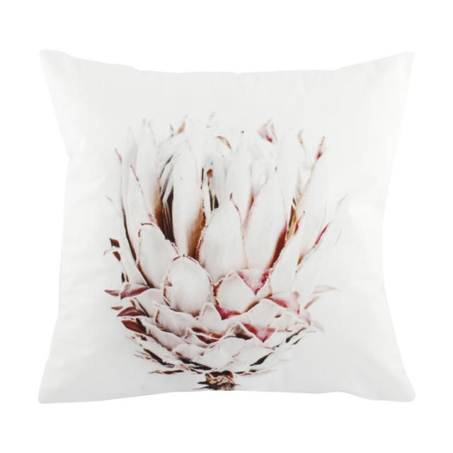 Kmart protea cushion