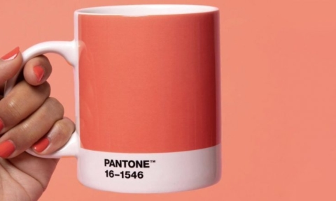 PANTONE Colour of the Year 2019 'Living Coral'