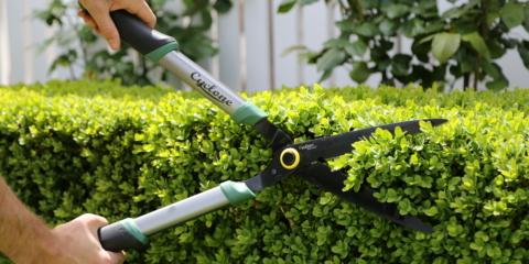 Cyclone hedge shears