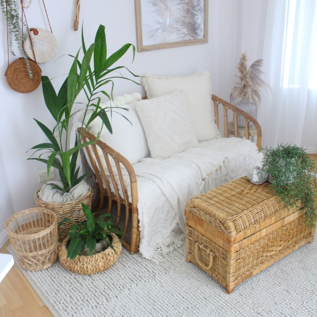 Zoe salvaged this cane chair from the side of the road and the cane chest from a second hand store. The rug, plants and planters are from Bunnings.