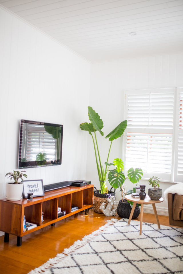 Indoor plants are a key feature in the restyle